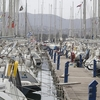 Crowded Corfu Harbor
