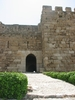 Crusader Fort