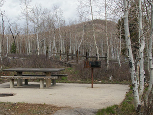 Currant Creek Campground