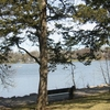 Cedar Lake Minnesota