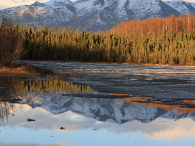 Chugach  Mountains Reflected On Goose  Lake