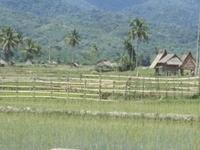 Bada Valley