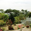 Da Trang Pagoda