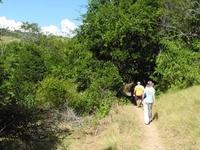 Rinca Loh Buaya Trail