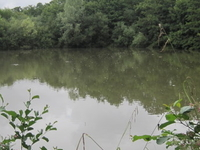 Darland's Lake Nature Reserve