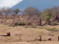 Gran Ruaha River