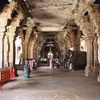 Elephant Among The Pillars Of Srirangam Temple