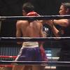 Evening Thai Boxing Match