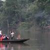 Ferry In Sundarbans