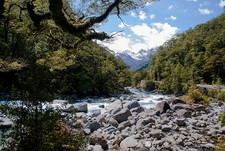 Fiordland National Park Views - South Island NZ
