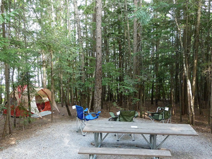 Fish Creek Campsite View - Glacier - Montana - USA