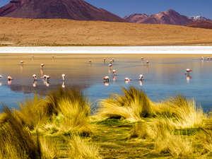 Atacama Explorer 4 Days Photos