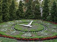 Flower Clock-Székesfehérvár