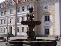 Fountain on the Market