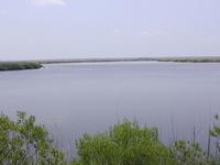 Frederica River