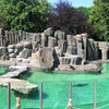 Fur Seal's Exposition