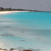Great Harbor Cay Horseshoe
