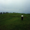 Greenery In Gulmarg
