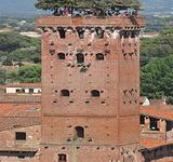Guinigi Tower