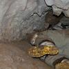 Honeycomb Hill Cave