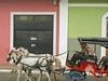 Horse-Car In Granada Nicaragua