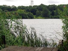 Horsehill Lake Near Burghfield