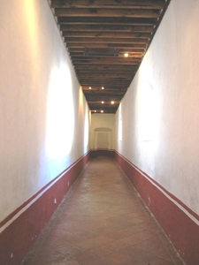 Hall Desierto Leones D F