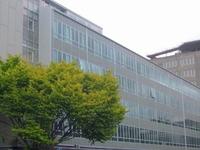 Hayward Colégio