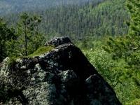 Hammastunturi Área Silvestre