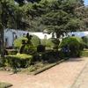 Hospitality Garden Leones
