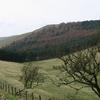 Housedon Hill