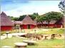 Jain Farms (Pure Veg)