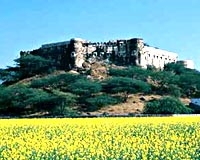 The Hill Fort, Kesroli