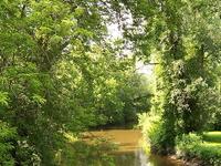 Irondequoit Creek