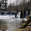 Issaquah Creek