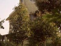 Ingua Villa