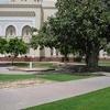 Jumeirah Mosque Gardens In Dubai