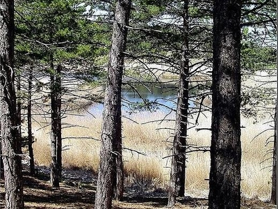Karagol Woodlands Bozkurt