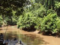 Kenong Rimba Park