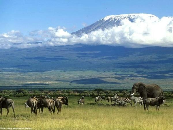 Mount Kilimanjaro Hike October Photos