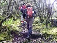 Kilimanjaro Umbwe Ruta
