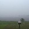 Kourou Rain Pluie