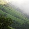 Kudachadri Kolur