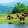 Kerala Tourism Wins Top Outlook Traveller Awards