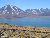 Los Flamencos National Reserve