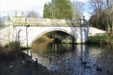 Lake In Chiswick House Grounds