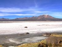 Las Vicunas National Reserve