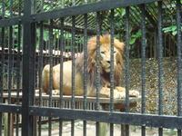 National Simon Bolivar Zoo and Botanical Gardens