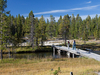 Lone Star Geyser Basin - Yellowstone - Wyoming - USA