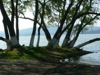 Laguna Catemaco